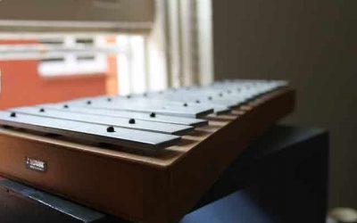 Cours de xylophone dans la Drôme