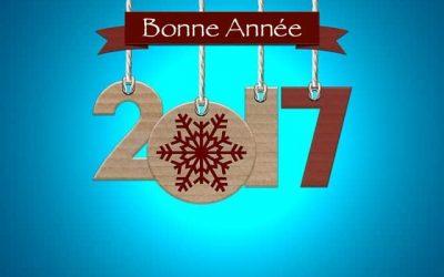 Musilodie vous souhaite une bonne année 2017  à toutes et à tous!